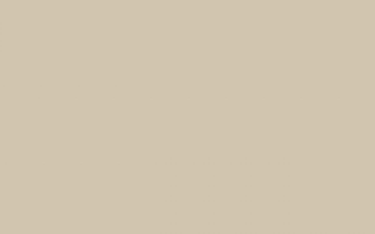 TS3-1007_ASH BROWN