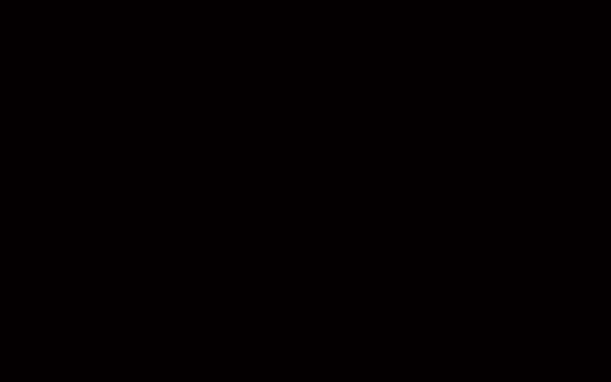 TS4-2018G_BLACK